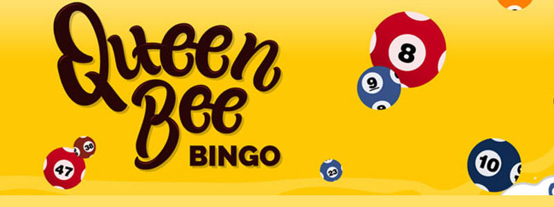 Nothing to Lose When You Play at New Bingo Sites No Deposit Required