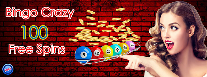 The Growing Craze For Online Bingo Sites