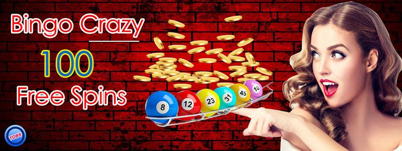 The Growing Craze For Online Bingo Sites