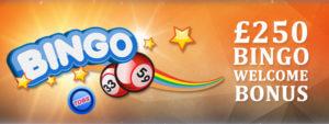 Top Online Bingo Site